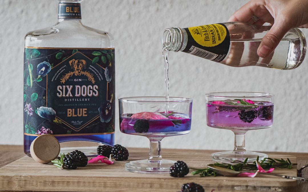 All you need to know about Six Dogs Blue Gin