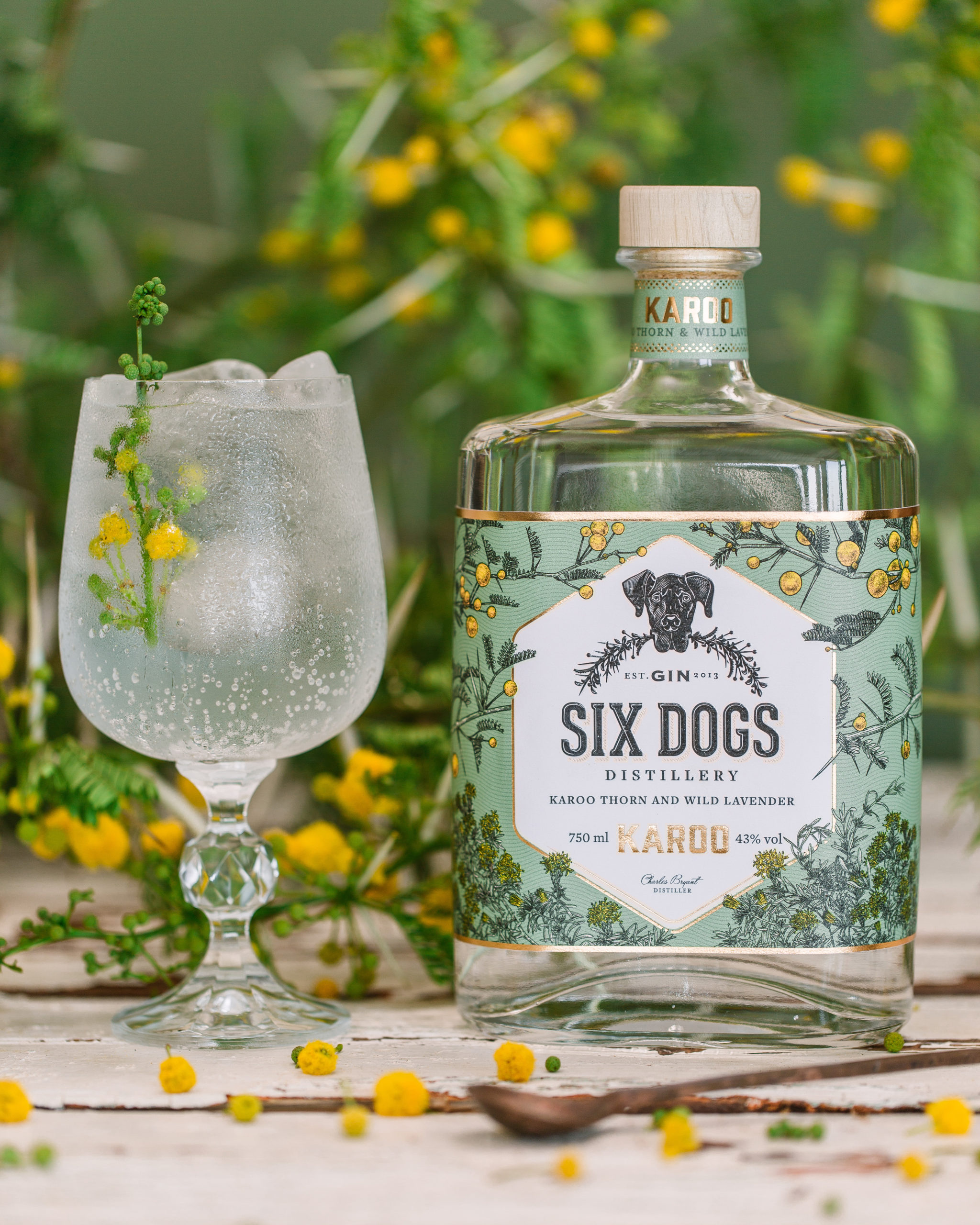 Six Dogs Distillery - Corporate Gin Tasting