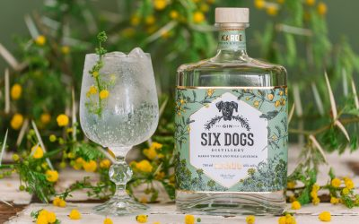 All you need to know about Six Dogs Karoo Gin